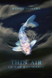 Thin Air of the Knowable by Wendy Donawa tops Audreys Books list of fiction bestsellers last week